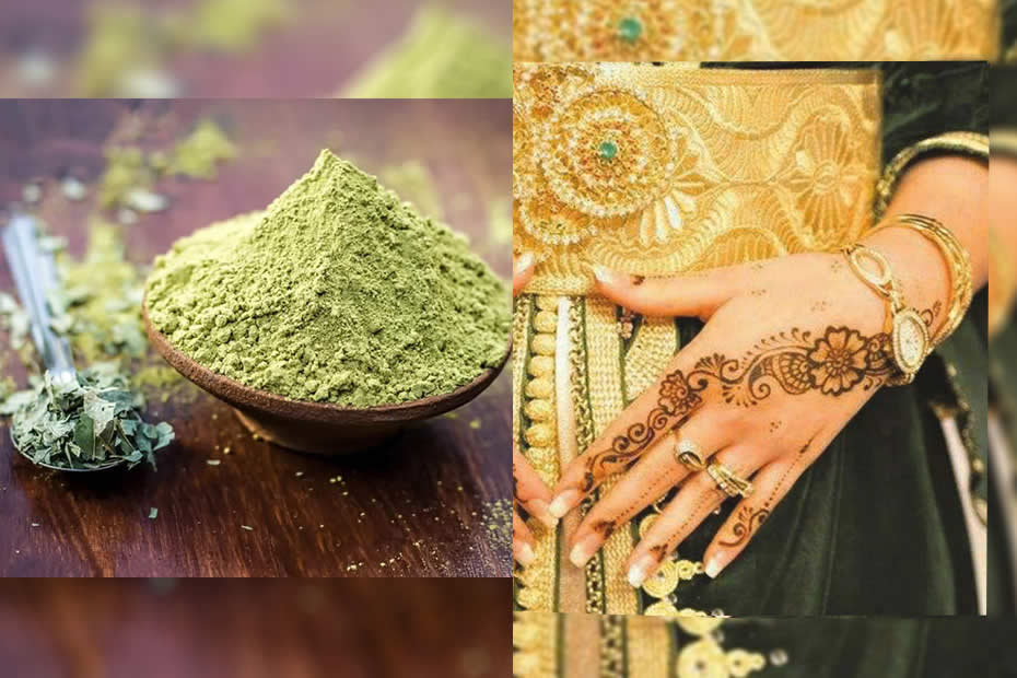 henna plant and moroccan henna tattoo
