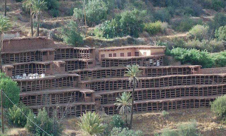 The largest traditional apiary in the world located in the Souss, in the Agadir region, in Morocco.