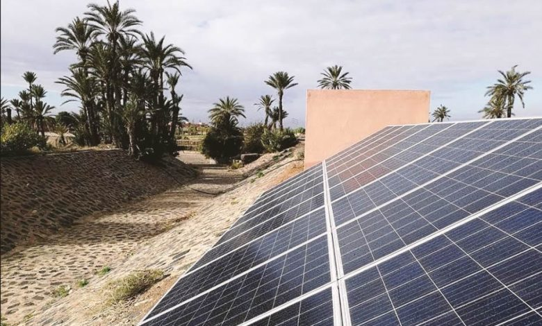 A solar panel in Morocco with some palm trees in the background