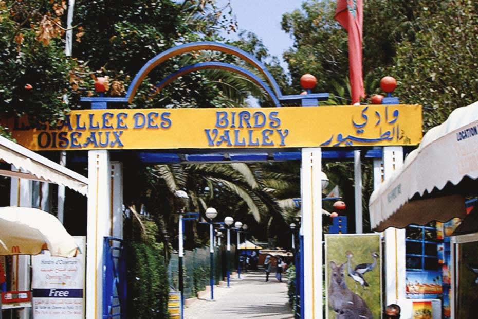 Visit Agadir's Birds Valley