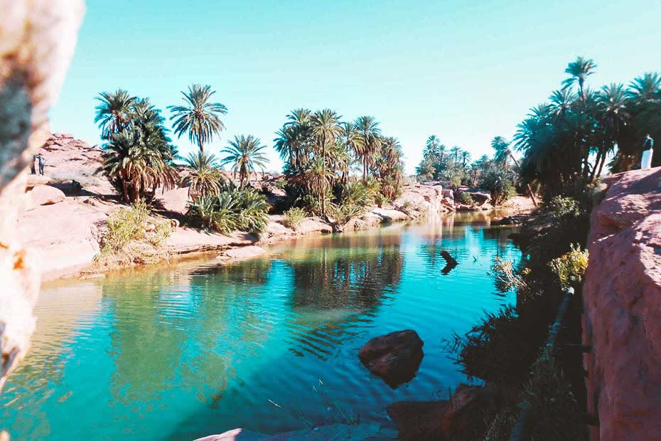 Visit Taroudant and the oasis of Tiout