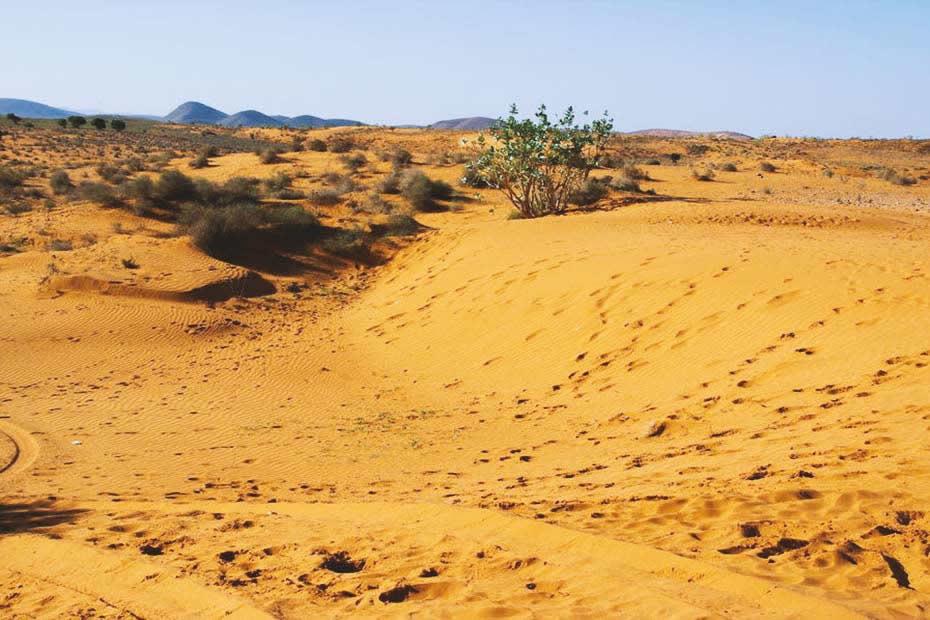 Visit the desert of Massa