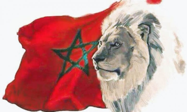 The Moroccan flag and the lion of atlas: Morocco against coronavirus (Covid-19)