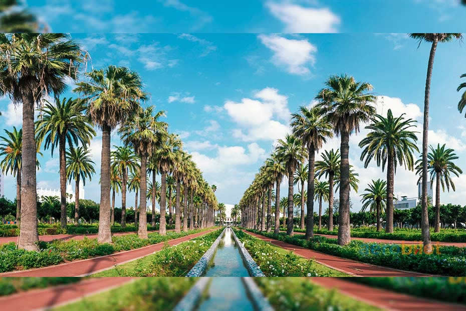 The Arab League Park: best place to visit in Casablanca that you shouldn't miss!