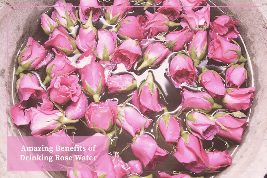 rose buds floating on rose water