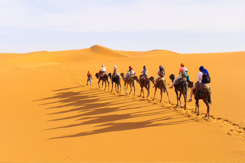 camel rides- foreigners riding camels in the desert of Morocco